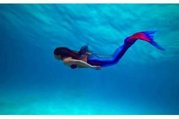 Как научиться плавать в моноласте